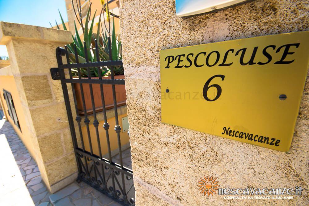Ingresso casa Pescoluse 6