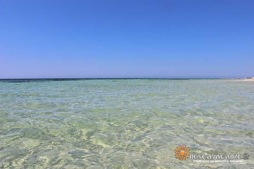 spiaggia di pescoluse foto 11