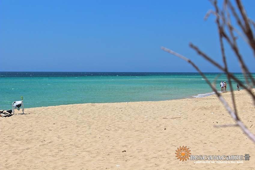 spiaggia di pescoluse foto 6