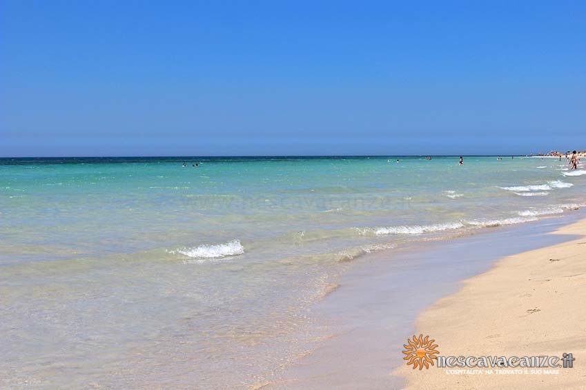 spiaggia di pescoluse foto 2