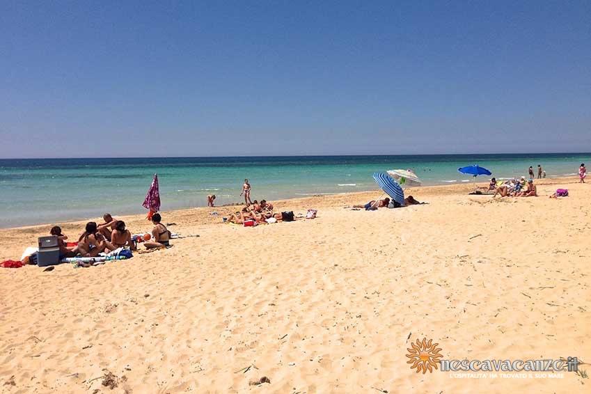 spiaggia pescoluse foto 15