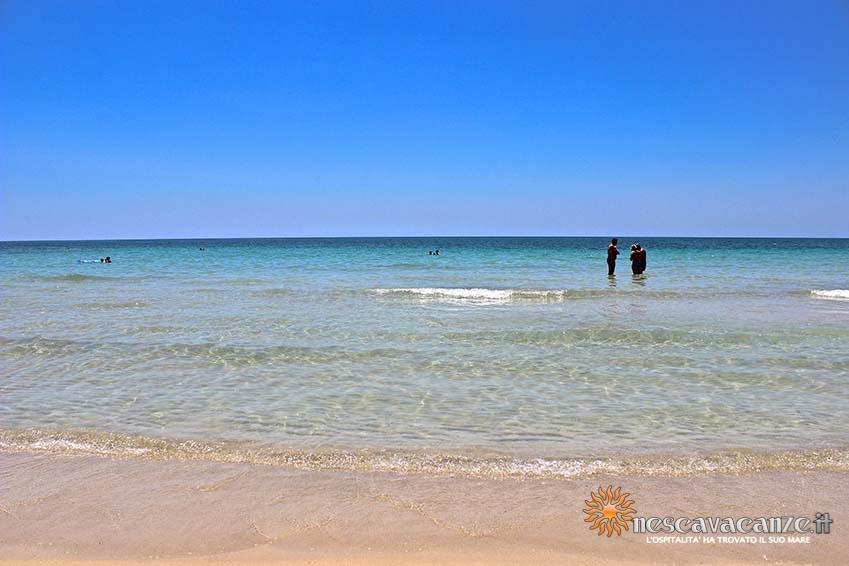 spiaggia di pescoluse foto 1