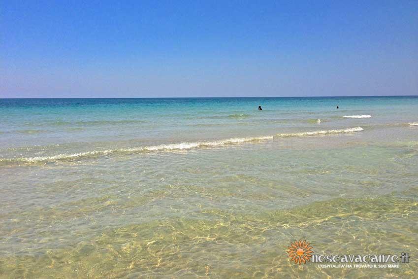 spiaggia_pescoluse_mare foto 3