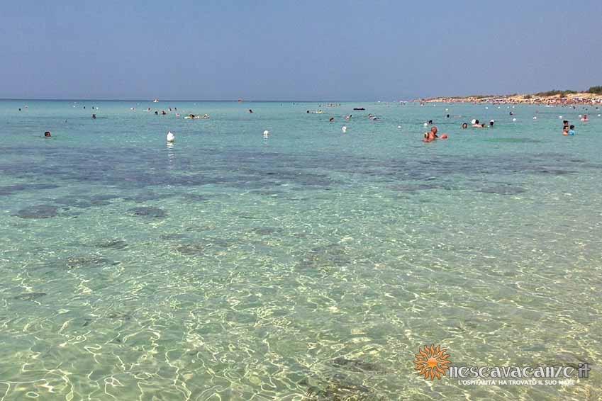 spiaggia posto vecchio foto 15