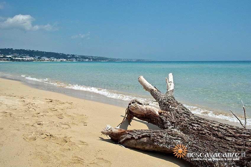 spiaggia di posto vecchio foto 13